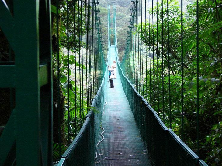 Der Monteverde Nebelwald Hängebrücke - Costa Rica Urlaub