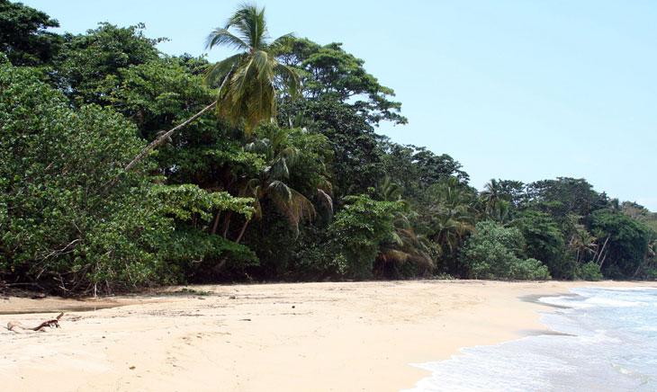 Puerto Viejo - Strand - Urlaub - Costa Rica